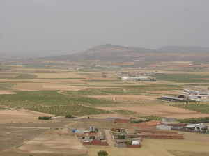 View from Cerro Calderico in the city of Consuegra, Spain