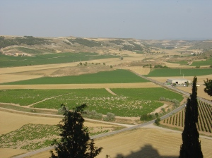 View of the Duero river valley from atop the Penafiel Castle